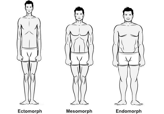 férfi testtípusok és fogyás