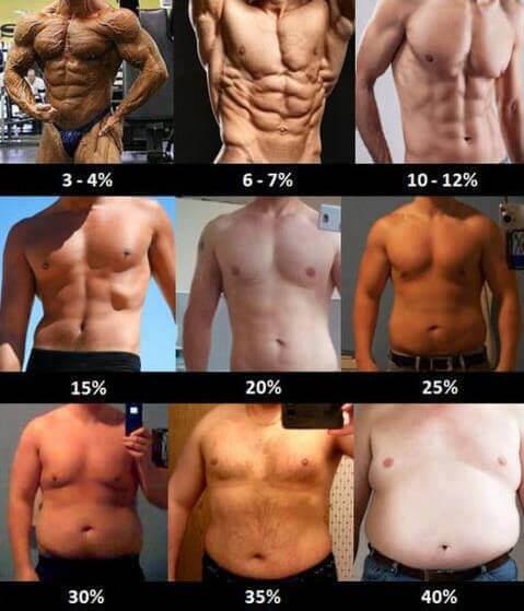 A kalóriamegvonásos és számolgatós diéták 95%-a sikertelen. De mi kell a sikerhez? - Lakatos Péter
