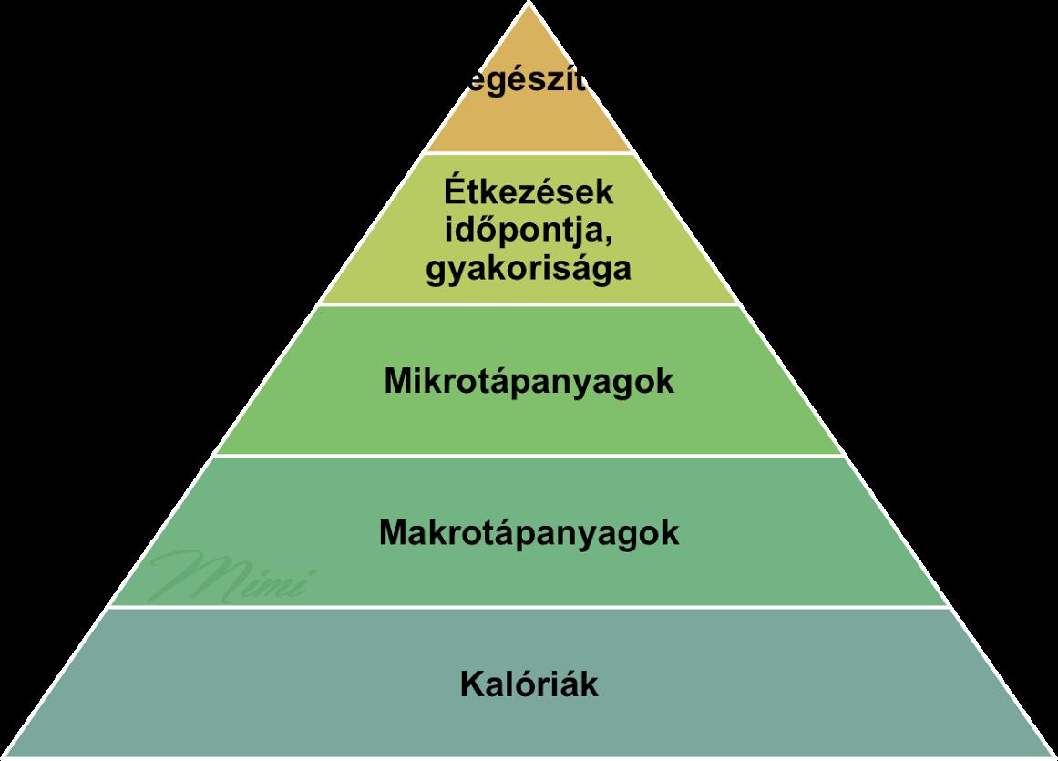 fogyás piramis rendszerek