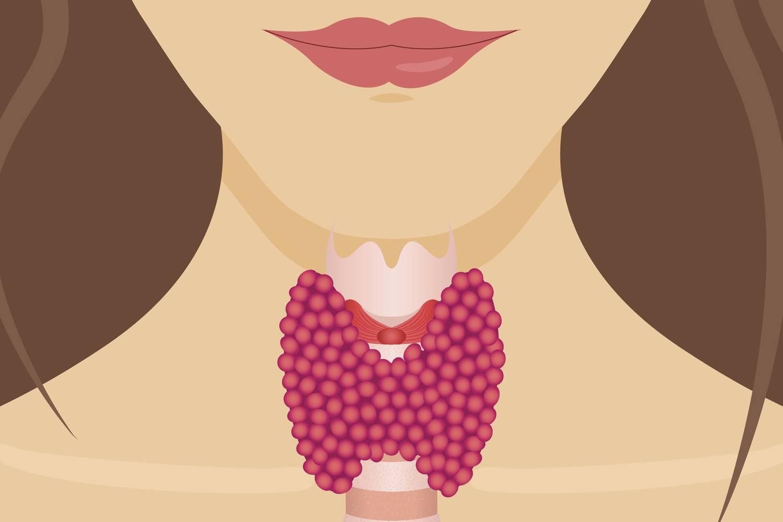 A folyton éhező kövérek - a fogyás titka