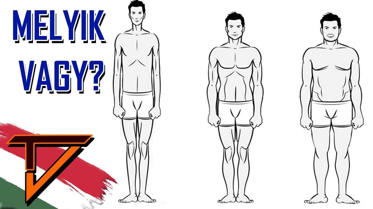hogyan lehet lefogyni testtípusonként)