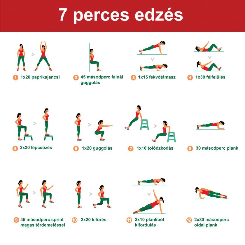 edzésterv fogyás