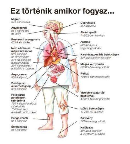 fogyás novant egészség