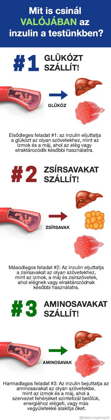 hypoglykaemia veszít zsírt)