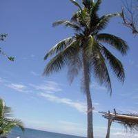 filipina fogyás)