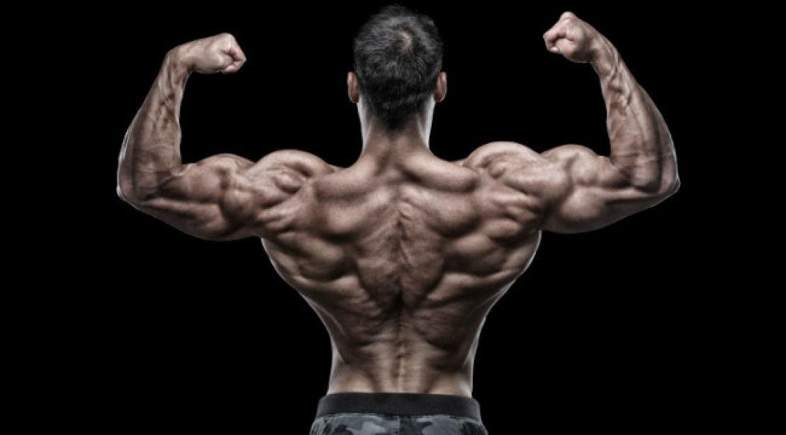 zsírégetés az alsó hátán