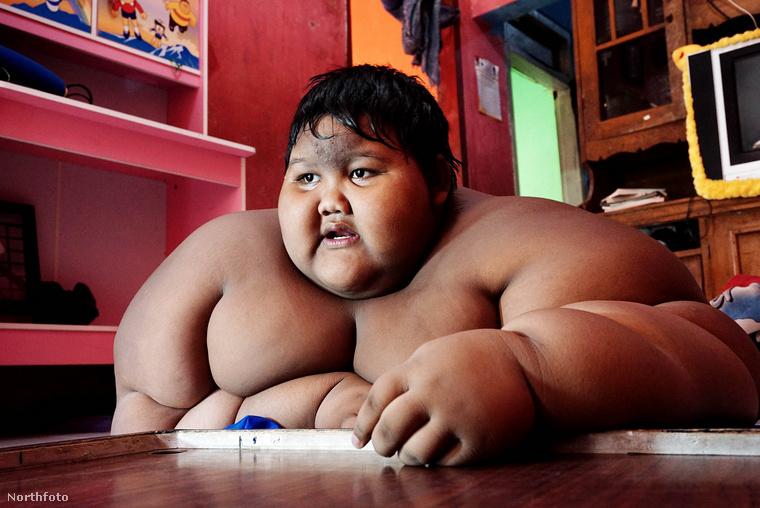 vanquish távolítsa el a zsírt el fogom veszíteni hüvelyk súly előtt
