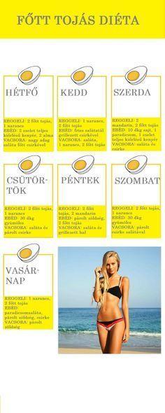 tojás diéta recept női zsírégetés testtípusonként