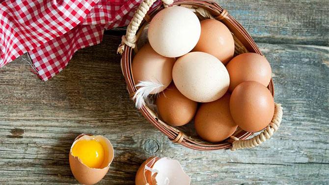 fogyás tojással