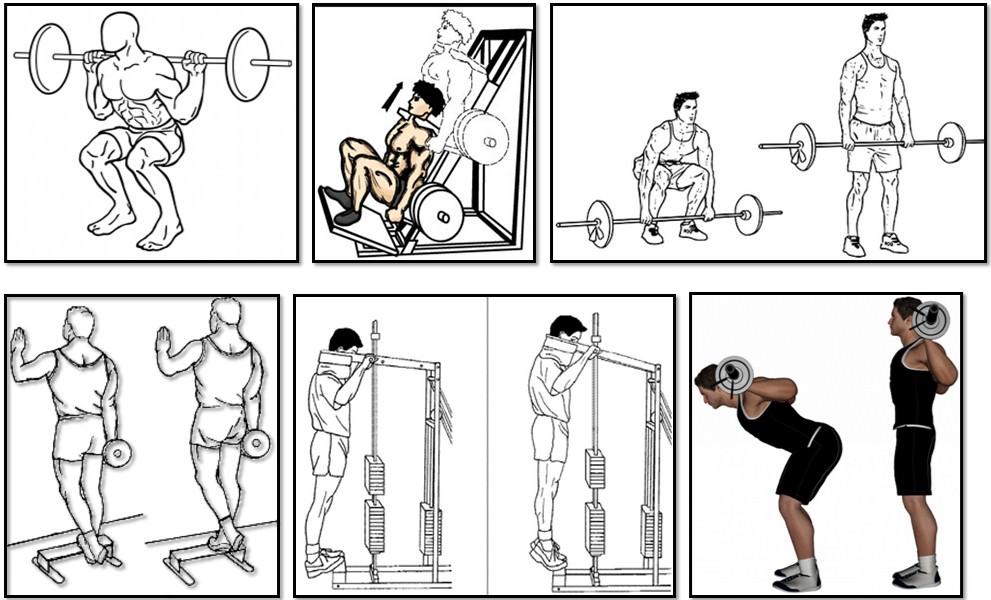 a legjobb módja annak, hogy lefogy testtípus)