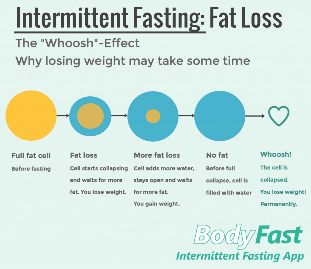 fat killer fasting