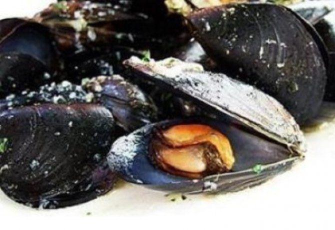 kagyló paradicsomszószban | NOSALTY