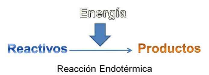 éget zsír endoterm vagy exoterm