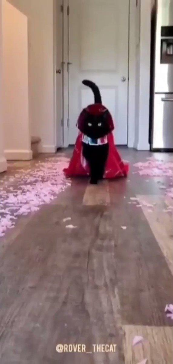 Százezerért fogy a tökéletes menyasszony - Blikk Rúzs