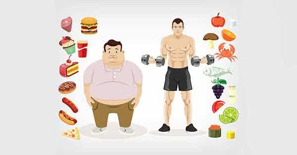 Milyen a jó diéta?