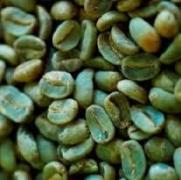 kávébab a fogyáshoz
