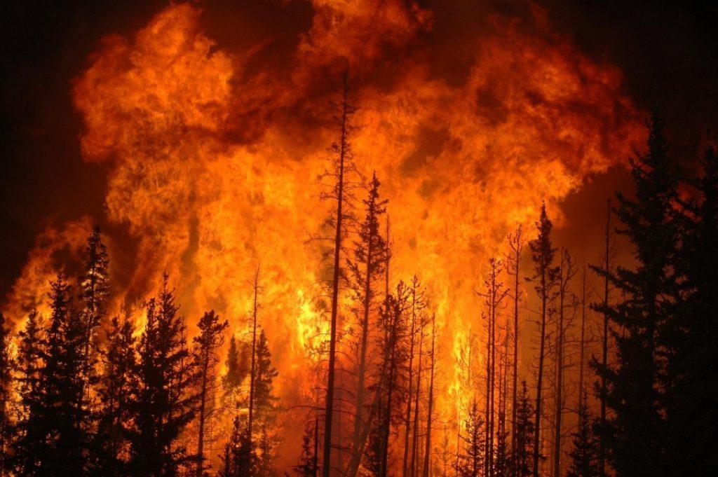 biztos tűzveszteség