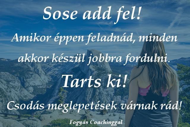 fogyás idézetek)