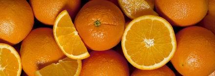 narancs tojás diéta elveszíti a gyűlöletet és nem a súlyt
