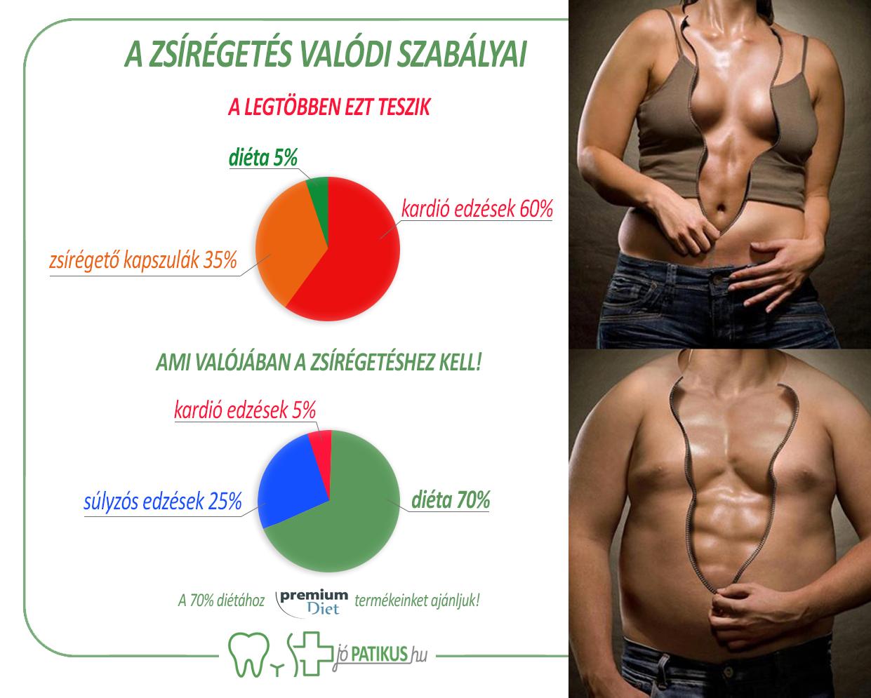 zsírégető emberi test)