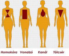 Eltérő testtípusok, avagy a fejlődést meghatározó adottságok