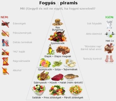 diéta kalória)