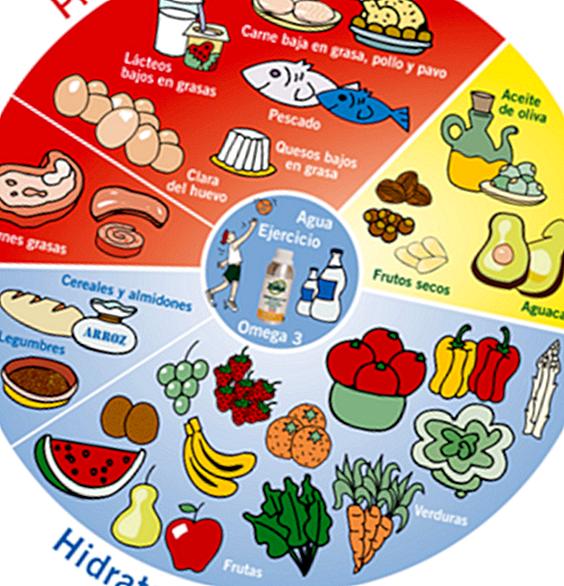 7 Legjobb táplálékkiegészítők a fogyásért