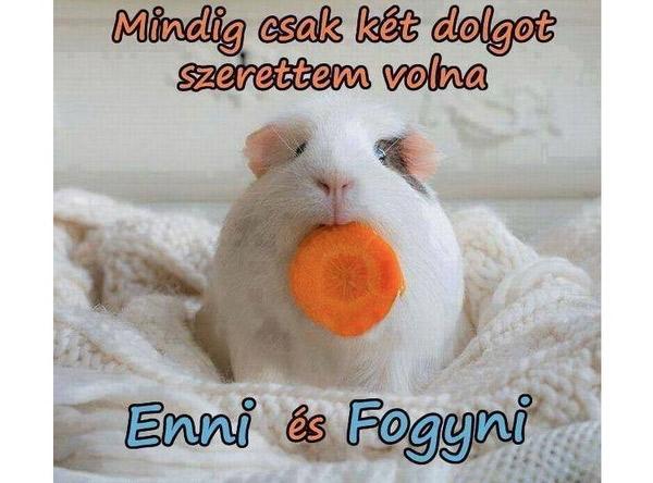 fogyás és enni)