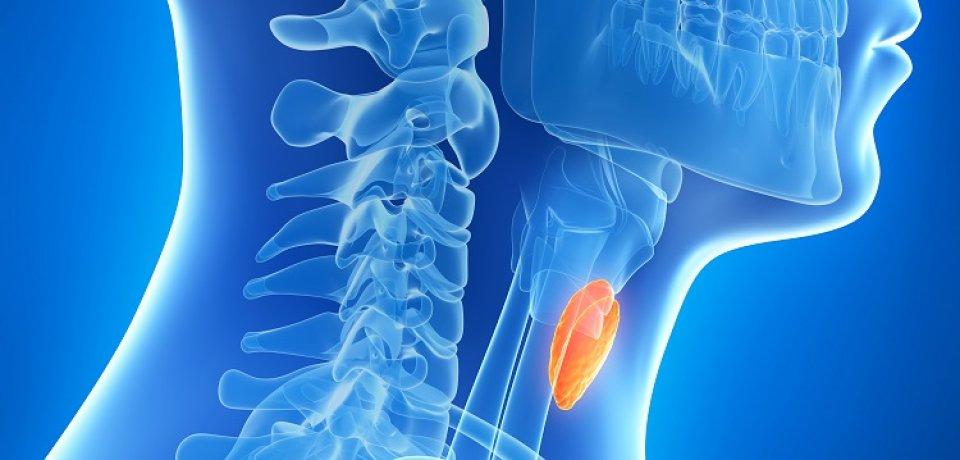 Betegségek, melyek testsúlyváltozást okozhatnak   Well&fit