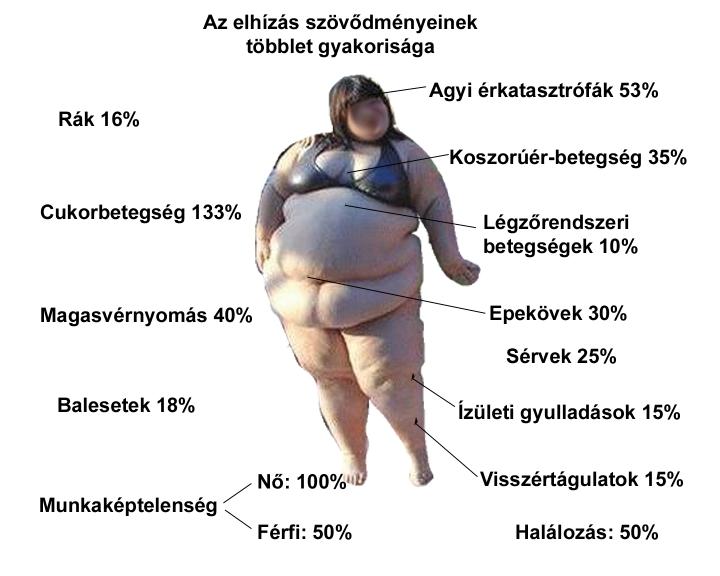 fogyni az elhízás)