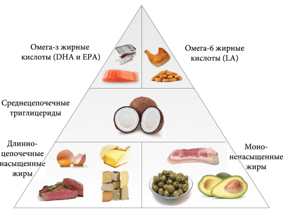 hogyan lehet elveszíteni a zsírt a szervekből)