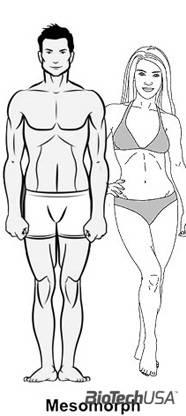 női zsírégetés testtípusonként